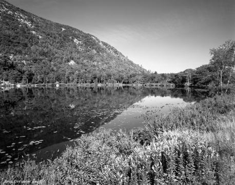 9-10-1986 Acadia National Park-Maine-Linhof Technika V 4x5 camera-90mm Schneider Super Angulon lens-K2 filter-Kodak Tri X Pan Pro 4x5 film-Kodak HC110C developer.