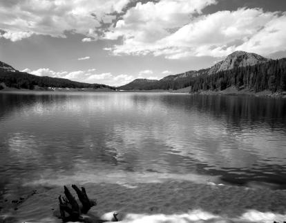 6-24-1990 Brooks Lake-Teton N.F. WY- Linhof Tech V 4x5 camera -90mm SA-G fil.T-max 100-T-max RS developer.