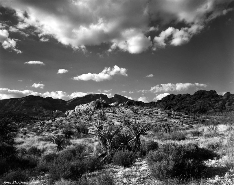 9-25-1999 Death Valley Arizona-Linhof Technika V-120mm Schneider Super Symmar HM lens-K2 filter-Ilford HP5+ 4x5 film-PMK Pyro developer.
