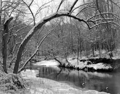 2-1993 Snowy Creek-Hoover Alabama-Linhof Technika 4x5 camera-90mm Schneider Super Angulon lens-Kodak Tmax 100 4x5 film-Kodak Tmax RS developer.