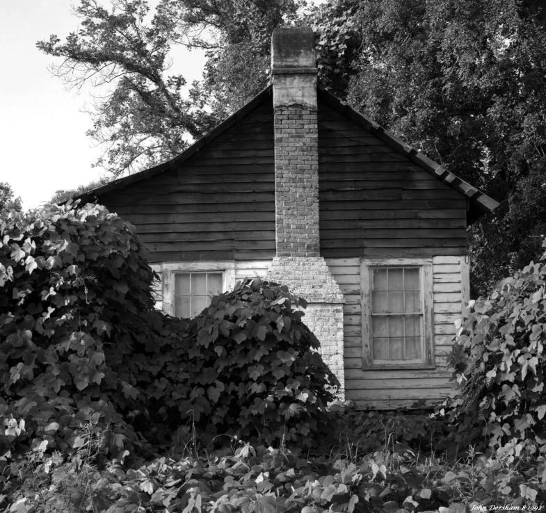8-30-1992 Kudzu house at Six Mile Alabama-Linhof Technika V 4x5 camera-150mm Nikkor W lens- Kodak Tmax 100 4x5 film-Kodak Tmax RS developer.