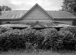 9-2-2009 Kudzu House near Clanton Alabama-Hasselblad camera-50mm Zeiss Disagon lens-Kodak Tmax 100 120 film-PMK Pyro developer.