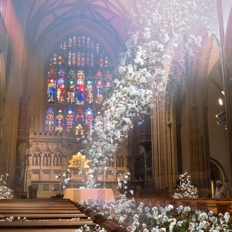 Sending the Message, Cotton, by John Dowell artist photographer