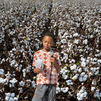 The Poet, Cotton, by John Dowell artist photographer