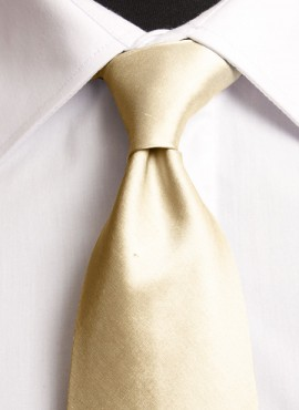 Neo Gold Standard Tie (+ Handkerchief)