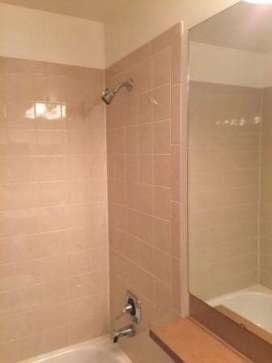 Mukilteo Shower Tile