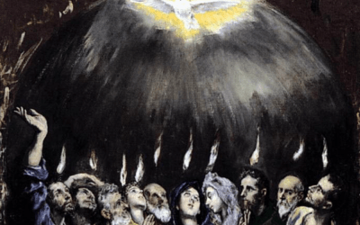 I Predict the Synod will…