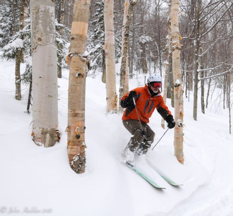 Lee Baughman threads the birches in the woods of Mad River Glen.
