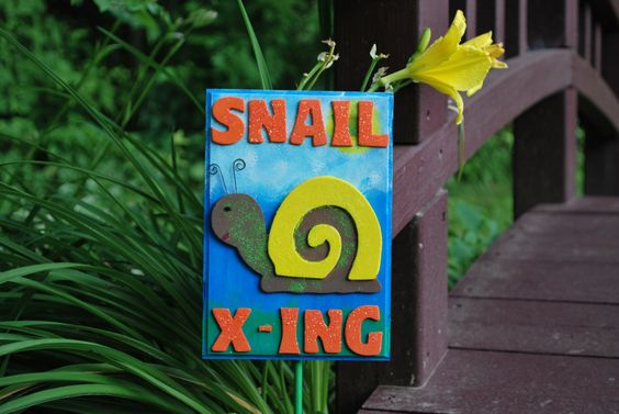 Snail Crossings and Forgiveness Opportunities