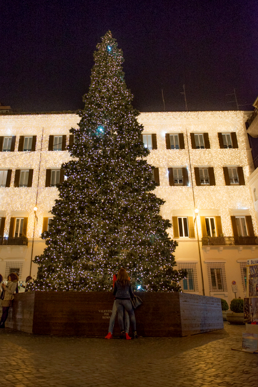 Tree in Piazza Magnanelli. Photo by Marina Pascucci