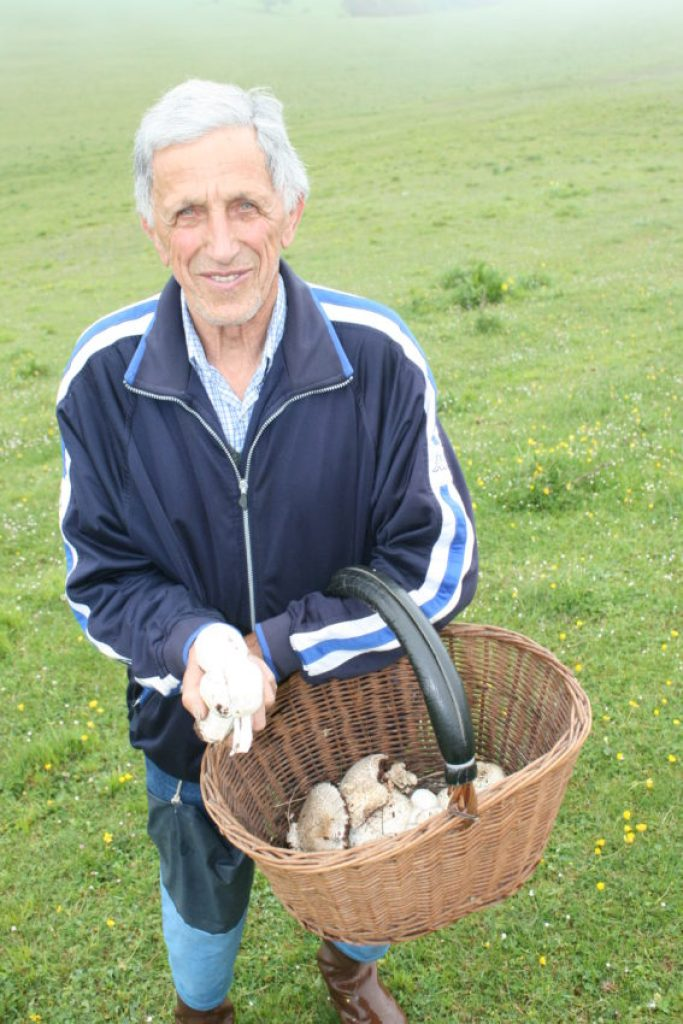 A local man collecting mushrooms in the morning.