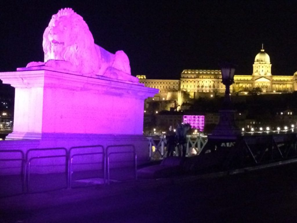 The lion on Chain Bridge and the Royal Palace beyond.