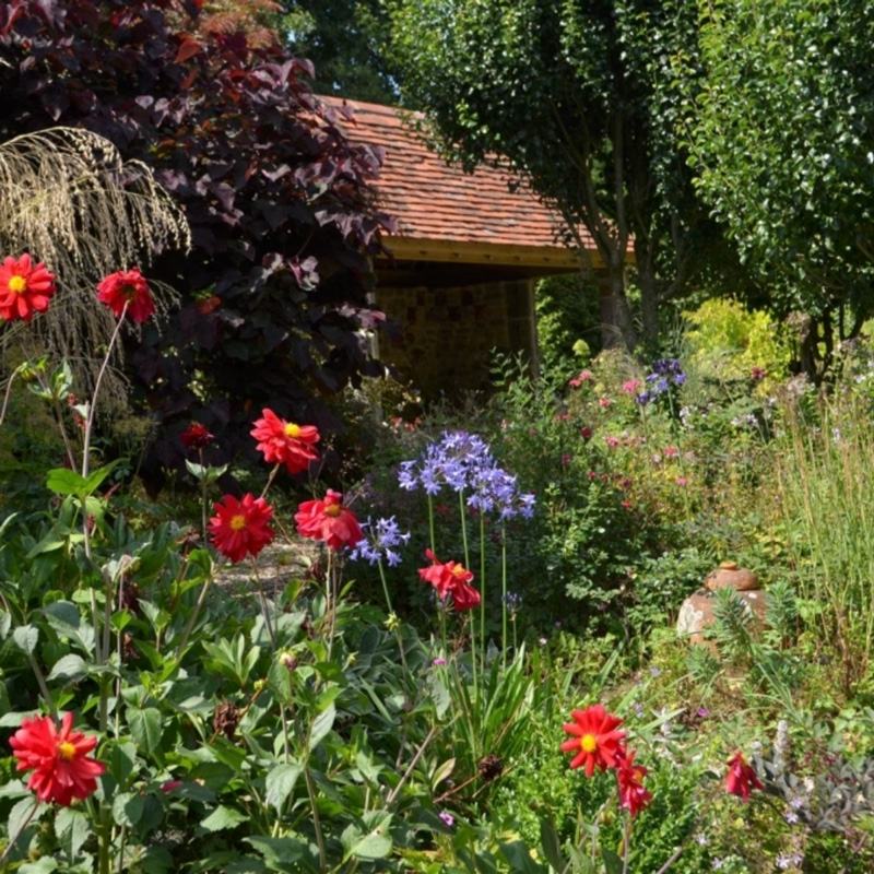 John-Horsey-Horticulture-Courses-Burrow-Farm-Gardens