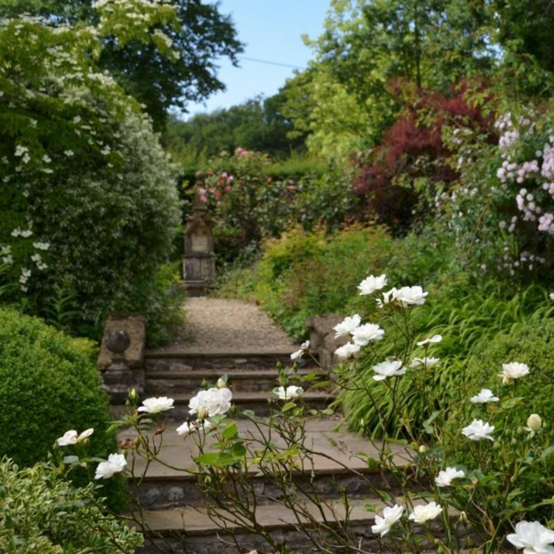 John-Horsey-Horticulture-Garden-design-Burrow-Farm-Gardens