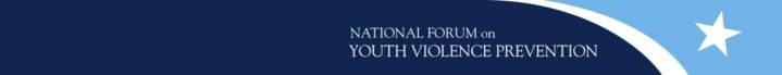 Interim Report 1: National Forum on Youth Violence Prevention