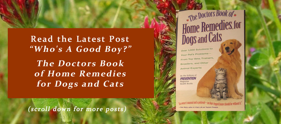 "Read the Latest Post ""Who's a Good Boy?"" The Doctors Book of Home Remedies for Dogs and Cats"