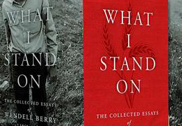 What I Stand On box set cover, cropped