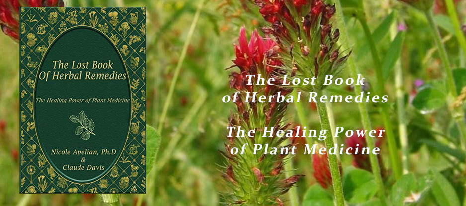 The lost book of herbal remedies - the healing power of plant medicine