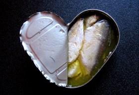 I Heart Sardines
