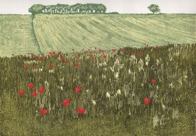 Reduction Linoprint, 36 x 23cm. Edition of 28 prints. £140