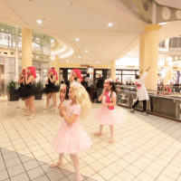 Todrick Hall Flash Mob Food Court Roosevelt Field Mall Covert production|produced by John Dowling.