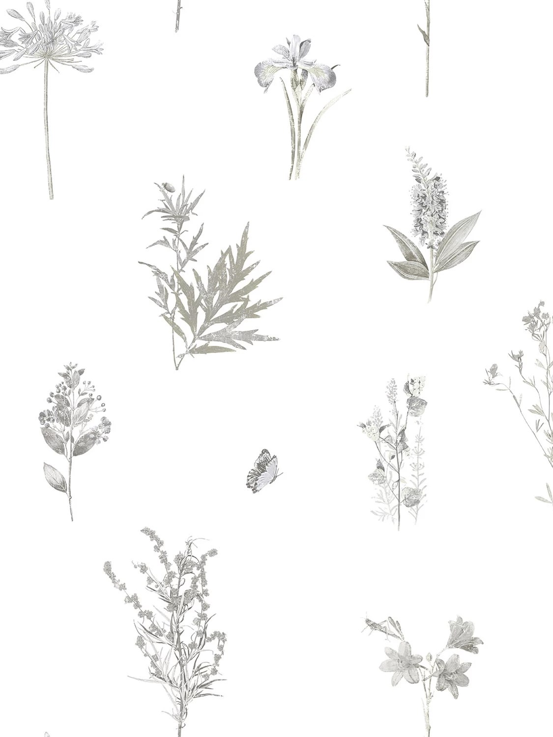 Galerie Botanical Wallpaper At John Lewis Partners