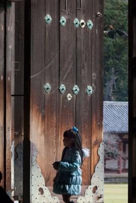 Nara - Todaiji Temple - where do I look first?