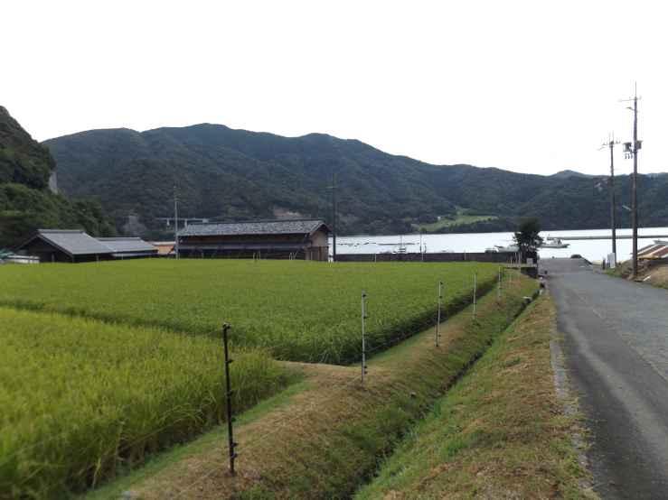 countrysideobama.jpg