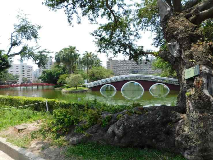 taichung park photo
