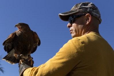 Hawk and Falconer