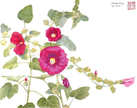 Hollyhock - Watercolor - 12 x 15 inches