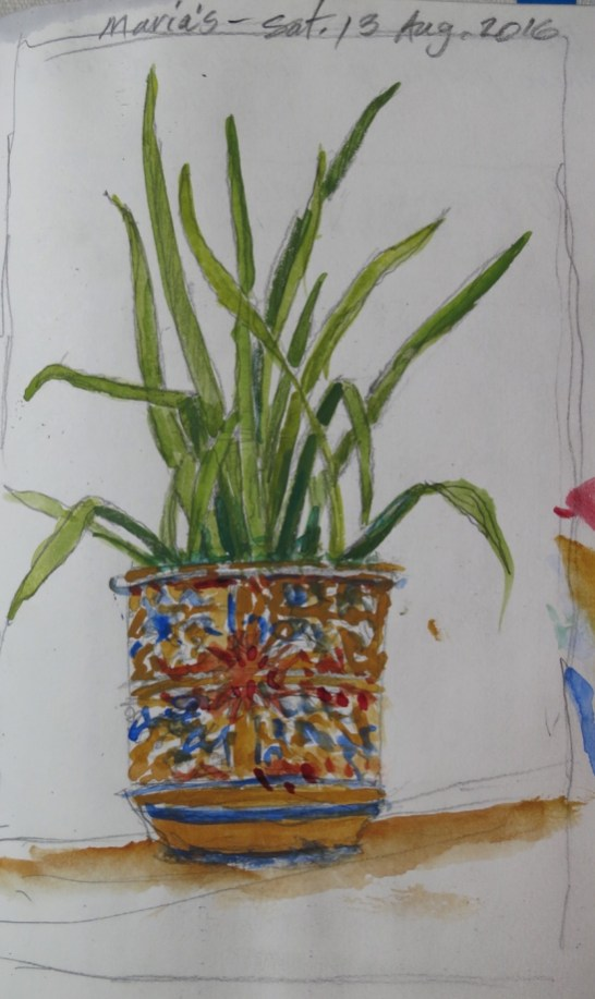 Plant at Maria's - Watercolor - 5 x 7 inches