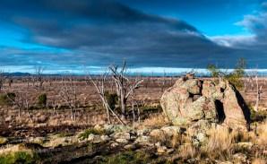 Robertsons Hill Winton Wetlands