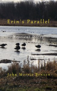 Erin's Parallel cover