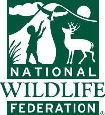 Logo of the National Wildlife Federation