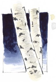 In her book A Trail Through Leaves, Hannah Hinchman includes a sketch of aspen against a dark background. This is one of my favorite sketches in the book. Though I was not aware of it at the time, I am sure that it was in the back of my head as I painted the contrasting background of Indatherone Blue watercolor.