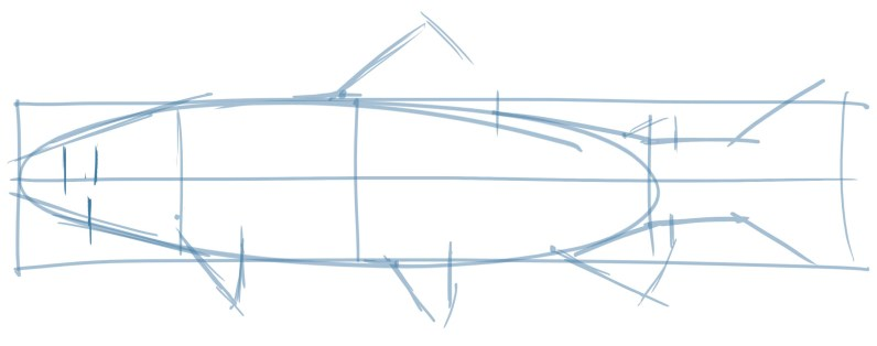 Add lines along the front and back of the eye and note where the eye is located relative to the posture line (the first line).