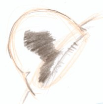 Carve in the dark values of the inner ear, leaving a large pale section on the upper right side where a tuft of long hair will sit.