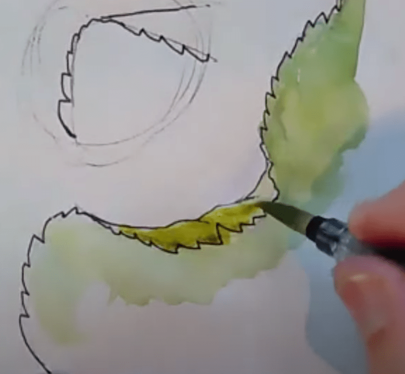 How to draw leaves (video)