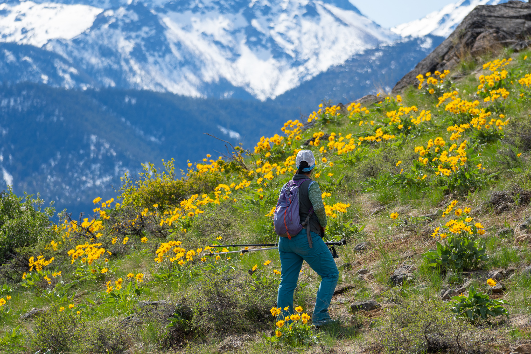 Virtual Nature Walk