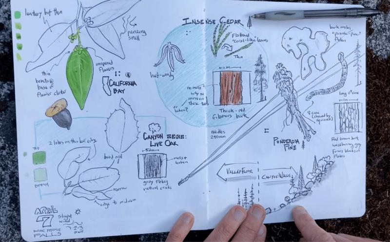 NJC, Episode 26: Exploring Biodiversity