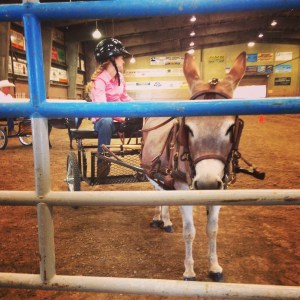 Daughter at show