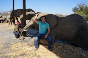 Hanging with the elephants before taking a ride.