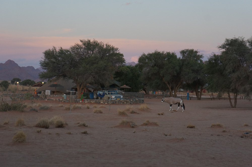 oryx campsite namibia sossusvlei namib sunset
