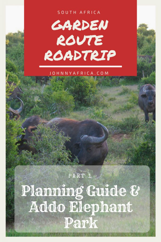 Garden Route Road Trip Itinerary Ultimate Planning Guide