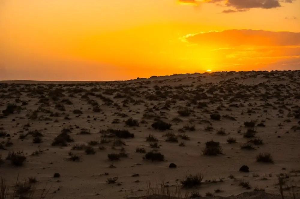 sunset tozeur desert tunisia