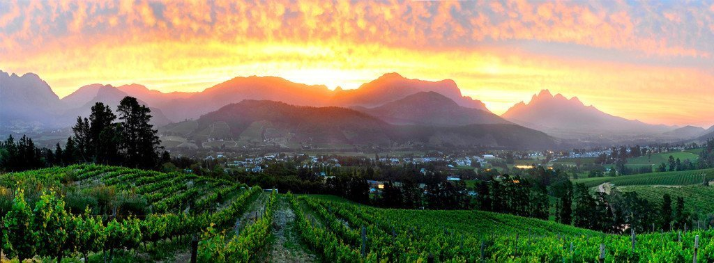 Sunset from a wine farm in Franschhoek. Wine lovers rejoice, this is the holy grail of wine regions. Well, I'm not going to compare wines, but I implore you to find a most beautiful wine region than the Cape.