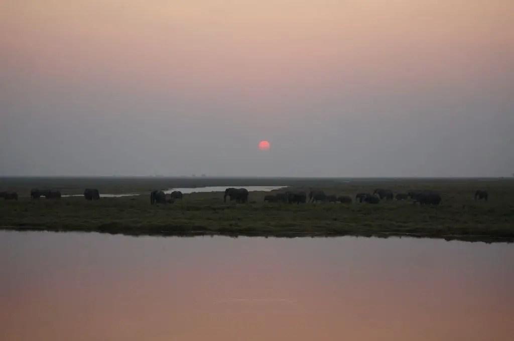 sunset chobe national park