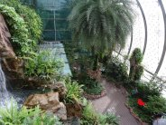 Cactus Garden, one of the numerous gardens at Changi airport