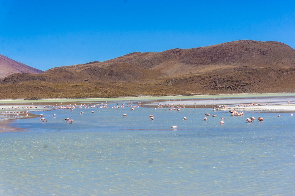lagoon salt flats